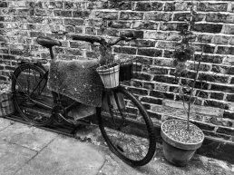 monocycles, monochrome, CB&W