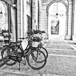 Bicycles and Arches monochrome