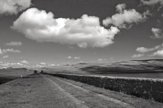 Countryside Paths, monochrome, scenery, Cee's B&W Challenge