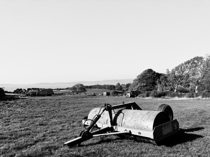 Field, monochrome, Silverdale, Gibraltar Point.
