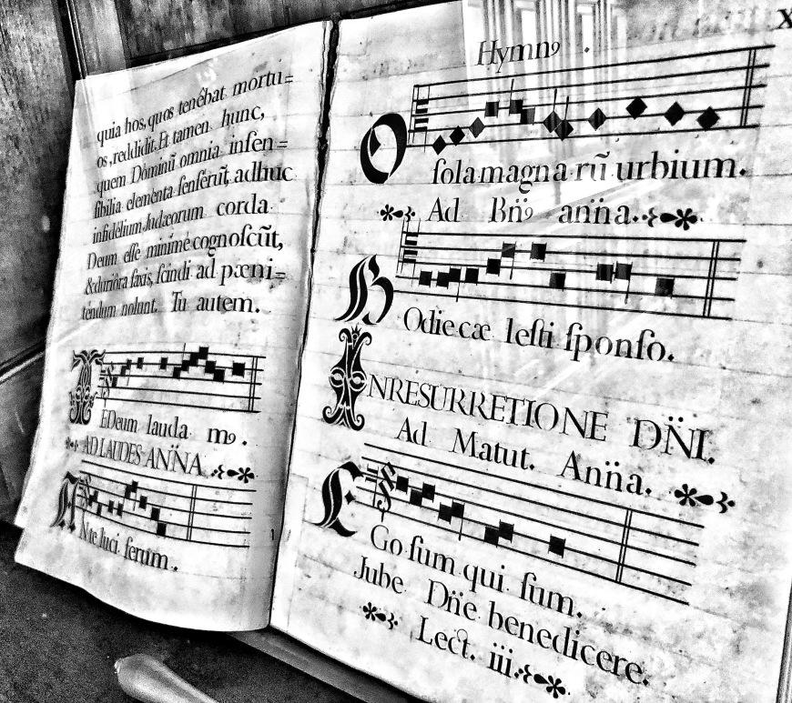 monochrome, music